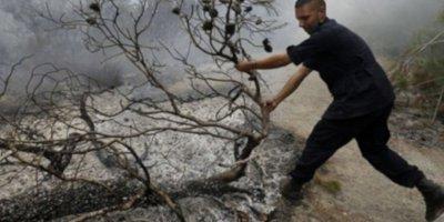 İsrail'den Lübnan'ın Güney Sınırındaki Ormanlara Yangın Bombası