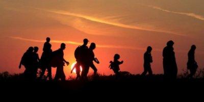 Almanya'dan Türkiye'ye Göçmen Sitemi