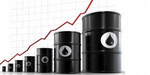Berat Onur yazdı: Zirve yapan enflasyon ve petrol fiyatları