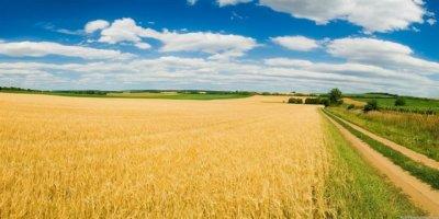 Çiftçilere mazot ve gübre destek ödemeleri başlıyor