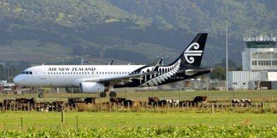 Yeni Zelanda'da bir havalimanı şüpheli paket nedeniyle kapatıldı